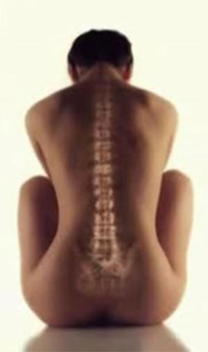 esquena